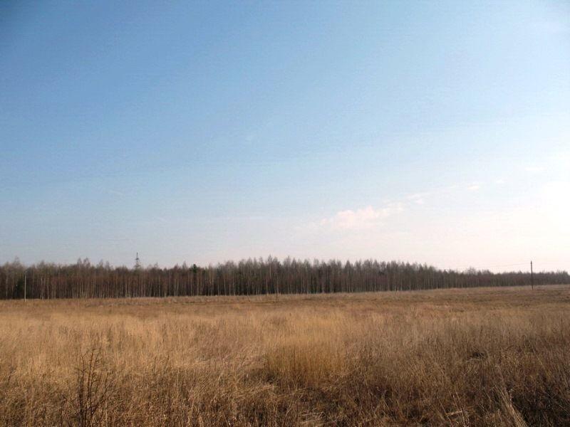 Продажа земельного участка 65,5 га